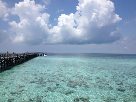 Pom Pom Island Resort & Spa: mare