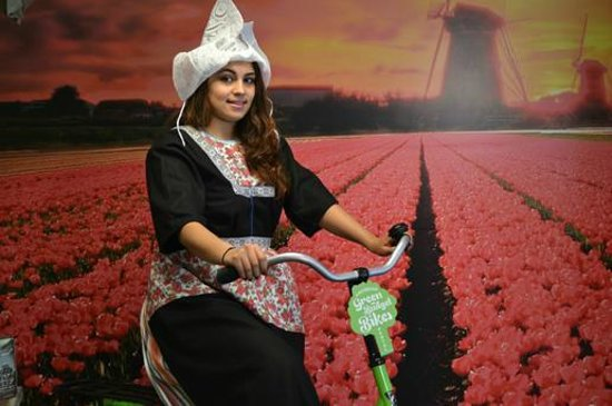 Green Budget Bikes: Tulips and Bikes - the true Dutch experience!