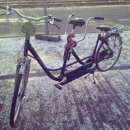 Green Budget Bikes: Tandems - the best way to see Amsterdam with a partner