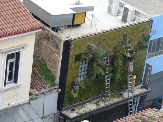 Athens Center Square: Watching from my room - the 'gardening' above Miran on Evripidou Street