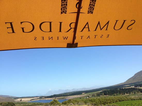 Sumaridge Wine Estate: View from the tasting room