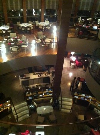 Park Hyatt Chennai: flying elephant