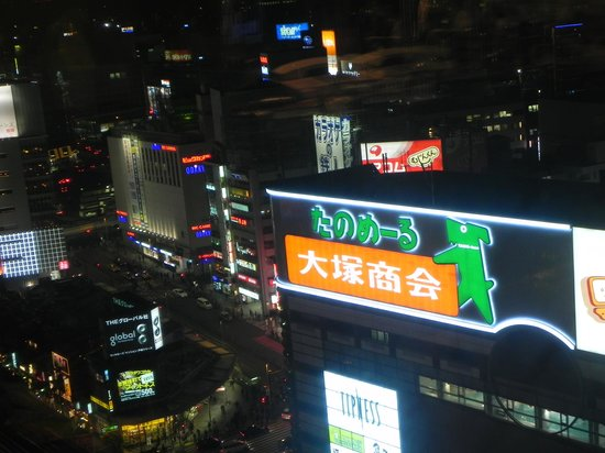 Shinjuku Prince Hotel: Night view from the hotel room.