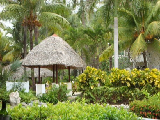 Paradisus Punta Cana: beautiful grounds