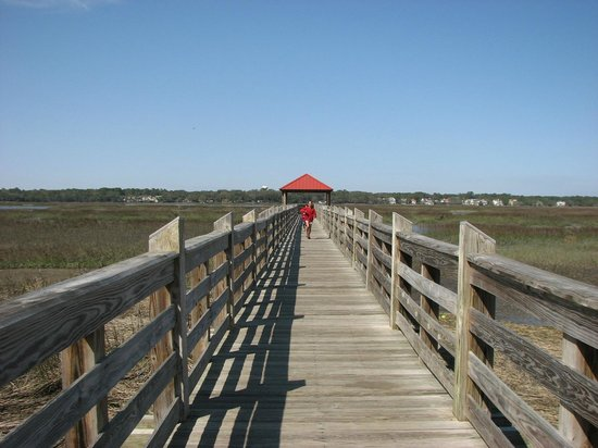 The fishing pier picture of disney 39 s hilton head island for Fish camp hilton head