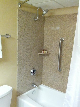 Sheraton Omaha Hotel: Shower