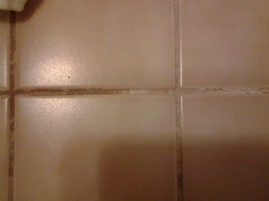 San Antonio Marriott Riverwalk: dirty bathroom floor tile