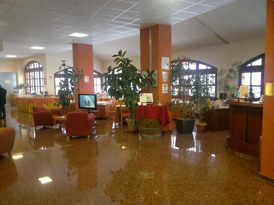 Hotel Erbaluce: hall