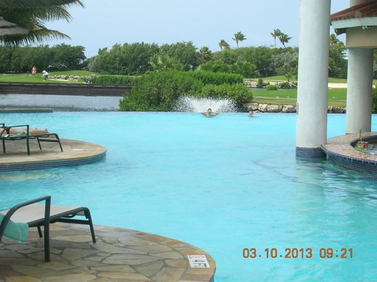 The infinity pool picture of divi village golf and beach resort oranjestad tripadvisor - Divi village golf and beach resort reviews ...