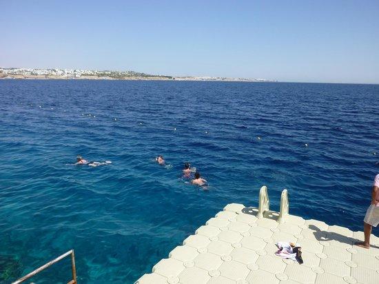 Sunrise Grand Select Arabian Beach Resort: Off hotel pontoon
