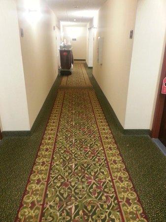 Drury Inn & Suites Meridian: hallway
