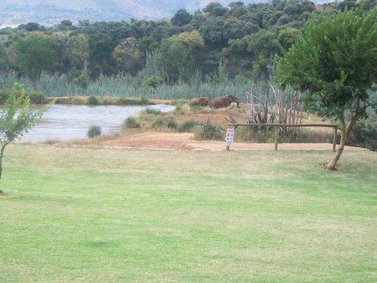 Askari Game Lodge & Spa: View from Chalet No. 14