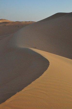 Qasr Al Sarab Desert Resort by Anantara: Desert excursion on Camel