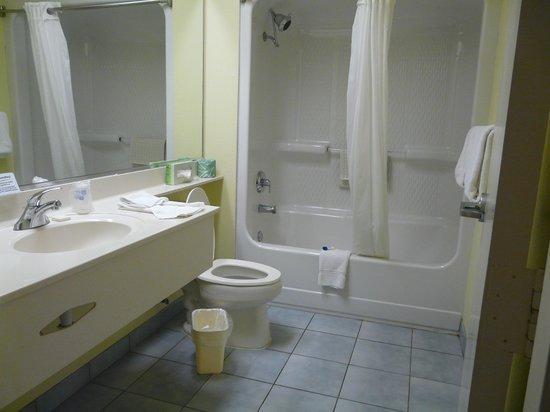 BEST WESTERN Naples Plaza Hotel: Baño inmaculado
