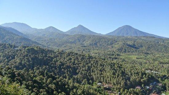 Puri Alam Bali Bungalows: vue depuis la terrasse