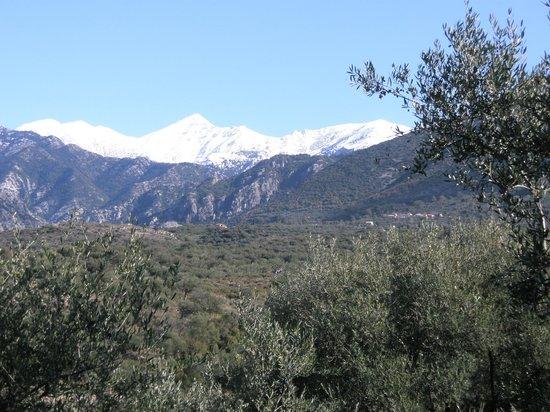 Hotel Faraggi: View of Profitas Ilias highest peak of the Taygetos