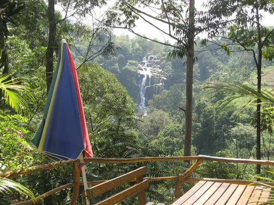 Waterfalls Homestay: View from front of guest house towards the falls