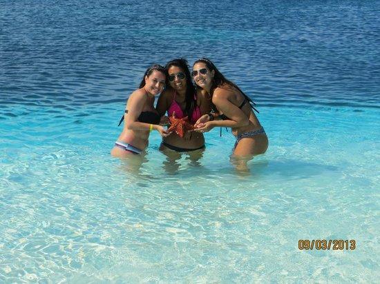 Playa Sirena: c las estrellas de mar