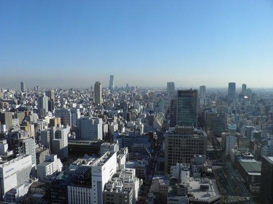 The St. Regis Osaka : vue de la chambre