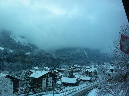Hotel des Alpes: snow day view from our room
