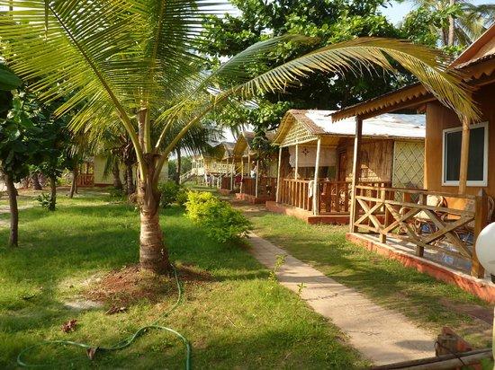 Sea Paradise Beach Huts 2018 Prices Reviews Goa Mandrem Photos Of Campground Tripadvisor