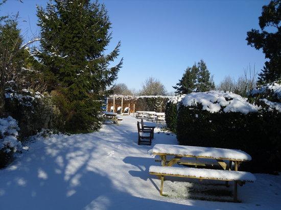 The Rose and Crown Inn: Winter Garden