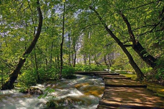 Grabovac Croatia  City pictures : Foto de Turist Grabovac, Grabovac: Barac cave TripAdvisor