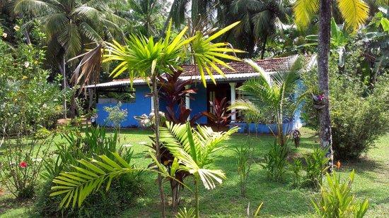 Mangrove Villa: haus