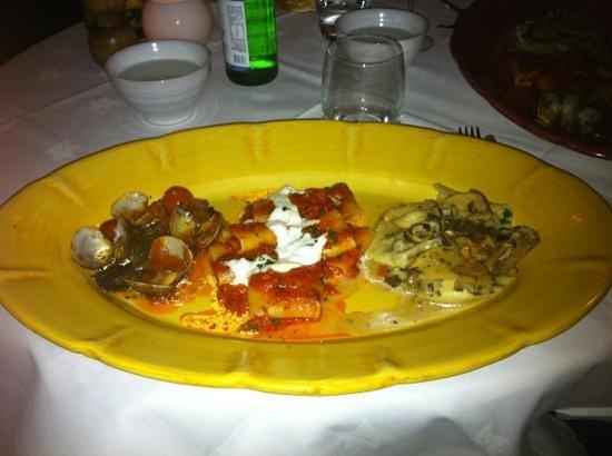 Cibo : Primi piatti MADE IN ITALY