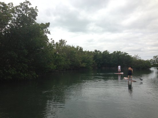 Oleta River State Park : Tranquil waters