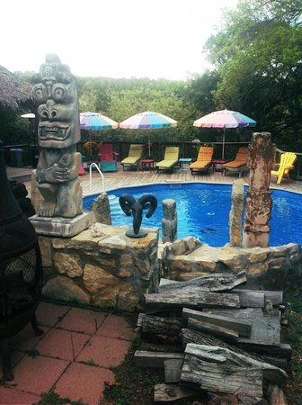 Lost Parrot Cabins: Pool Area