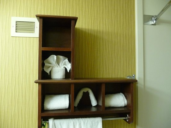 Hampton Inn - St. Louis Downtown at the Gateway Arch: bathroom, note Arch washcloth