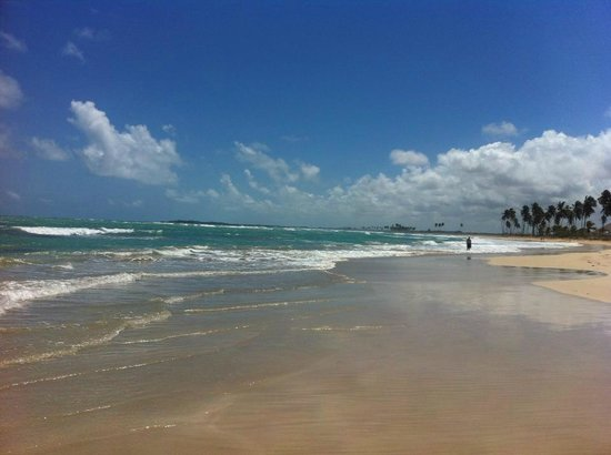Dreams Punta Cana Resort & Spa : Gorgeous Beach