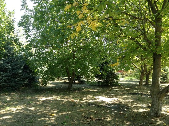 Rozhdestvenskiy Park of Culture and Leisure