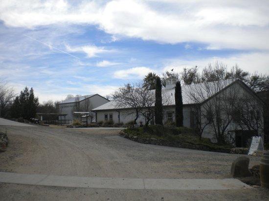 Sedona Wine Country Tours: Paige Springs Vineyards