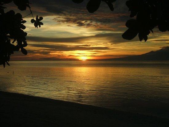 Kiwi Dive Resort : Sunset