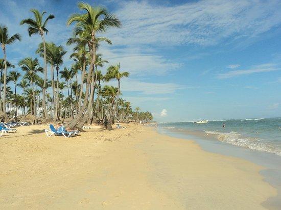 Sirenis Punta Cana Resort Casino & Aquagames: beach