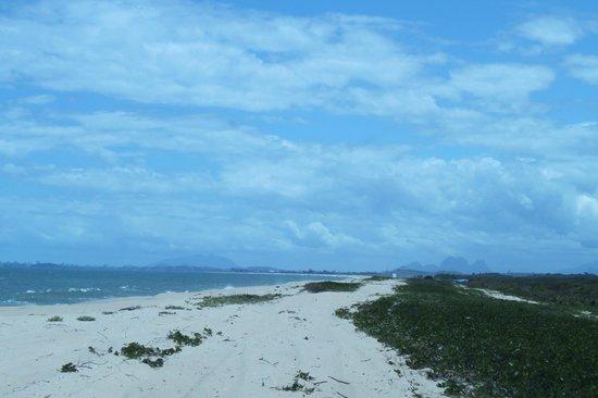 Nacional Park of Restinga de Jurubatiba