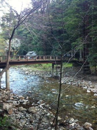 Ripplewood Resort: Big sur river