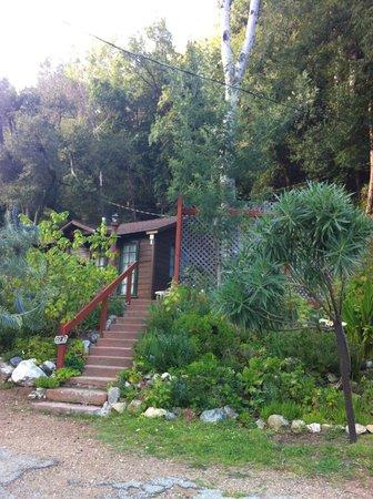 Ripplewood Resort: Cabin 12 A