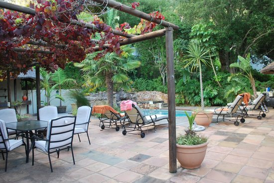 Ikhaya Safari Lodge: pool area