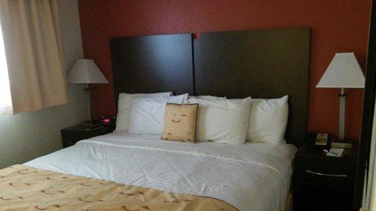 Sirata Beach Resort: Updated bedding