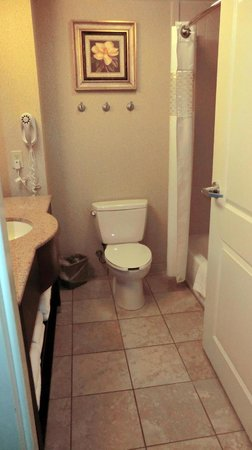 Hampton Inn Vicksburg: Bathroom