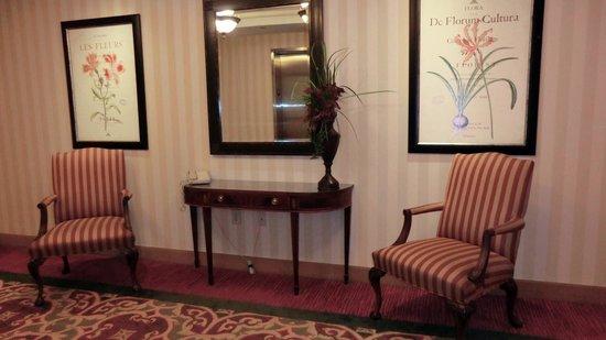 Hampton Inn Vicksburg: Fourth floor elevator area