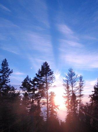 Polipoli Springs State Recreational Area: Poli Poli glorious sunset through the trees
