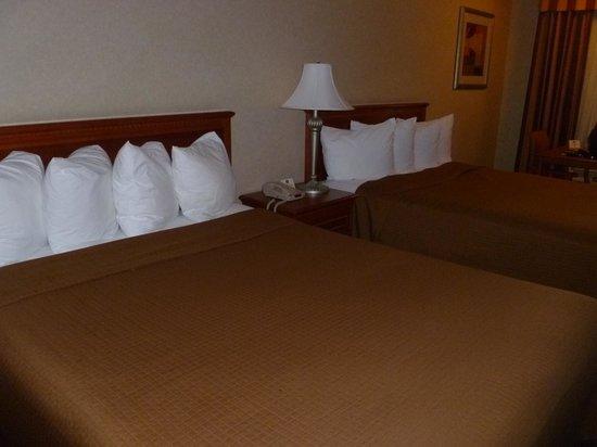 Best Western Norwalk Inn: The beds
