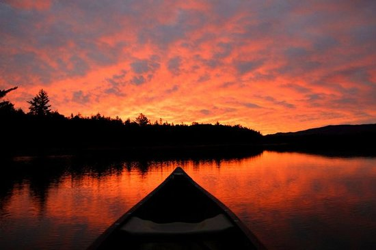 Prong Pond : Sunrise from canoe