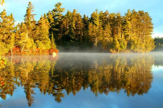 Prong Pond: Great colors