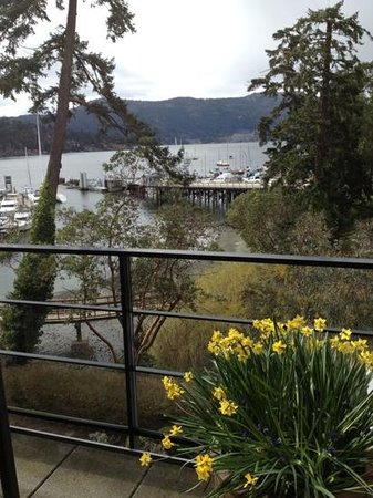 Brentwood Bay Resort & Spa : view from room balcony