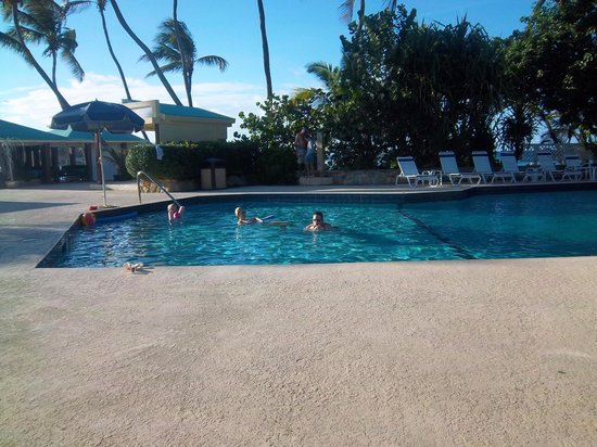 The Palms at Pelican Cove: The pool